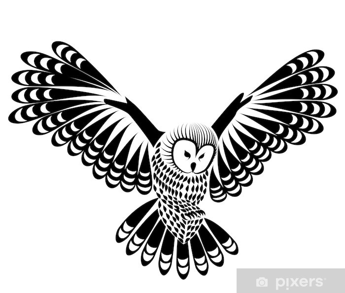 Mural de Parede em Vinil owl bird vector for mascot or tattoo design or  idea of logo