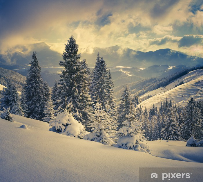 Beautiful winter landscape in the mountains Vinyl Wall Mural - iStaging