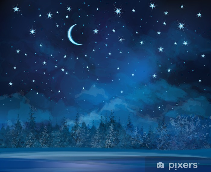 Fototapeta winylowa Wektor noc zimowa scena, niebo i las w tle. - Tematy