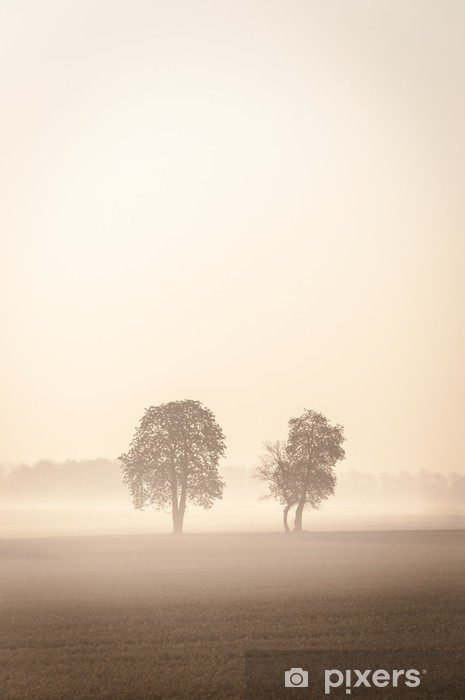 Pixerstick Sticker Twee eenzame bomen in de mist - Thema's
