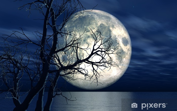 3D landscape background with moon and tree Pixerstick Sticker - iStaging