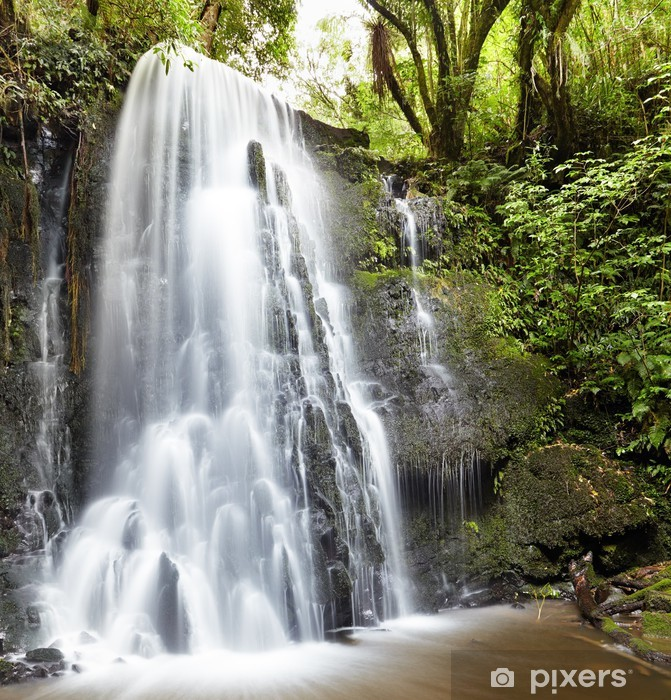 Matai Falls, New Zealand Vinyl Wall Mural - Themes