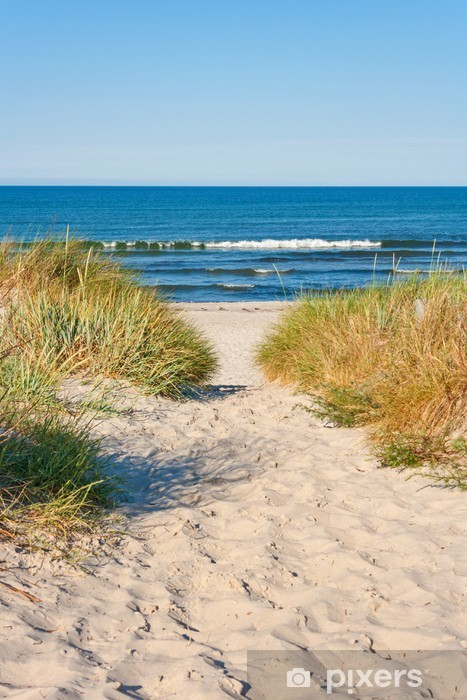 Fotomural Estándar Acceso a la playa - Mar y océano