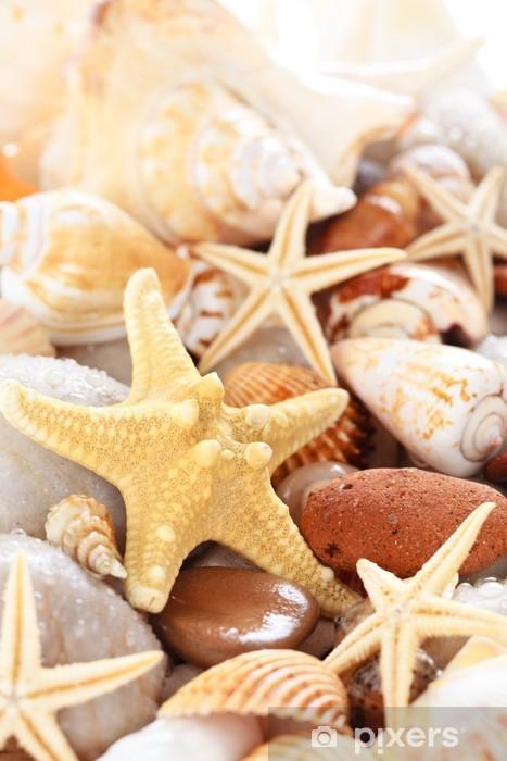 Vinilo para Nevera Seashells Fondo -