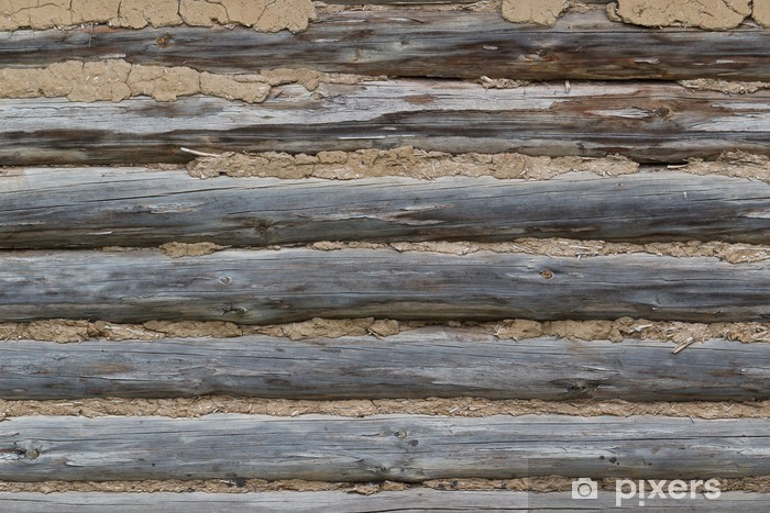 logs, coated with a solution of Vinyl Wall Mural - Textures