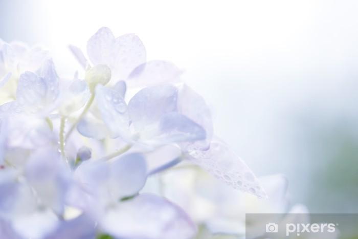 水滴とアジサイ Pixerstick Sticker - Flowers