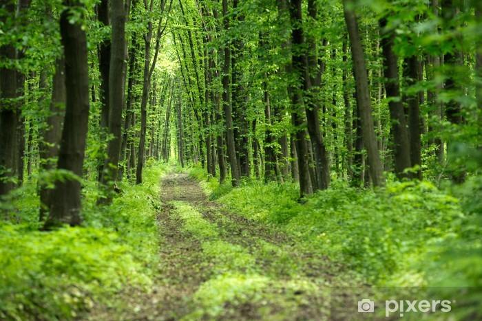 Pixerstick Aufkleber Forst - Bäume