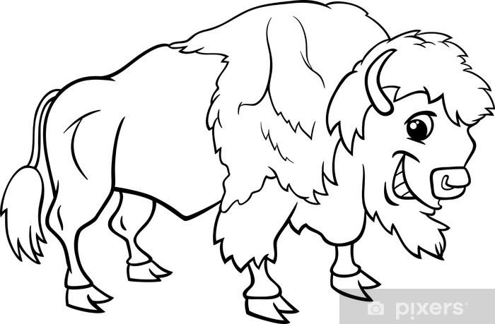 fototapete bisons amerikanische büffel malvorlagen