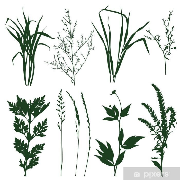 Naklejka Pixerstick Rośliny - Pory roku