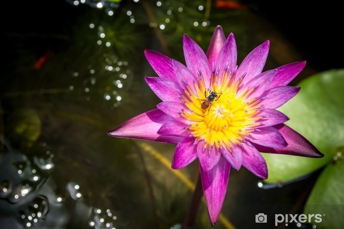 Nálepka Pixerstick Bee v lotosu - Květiny