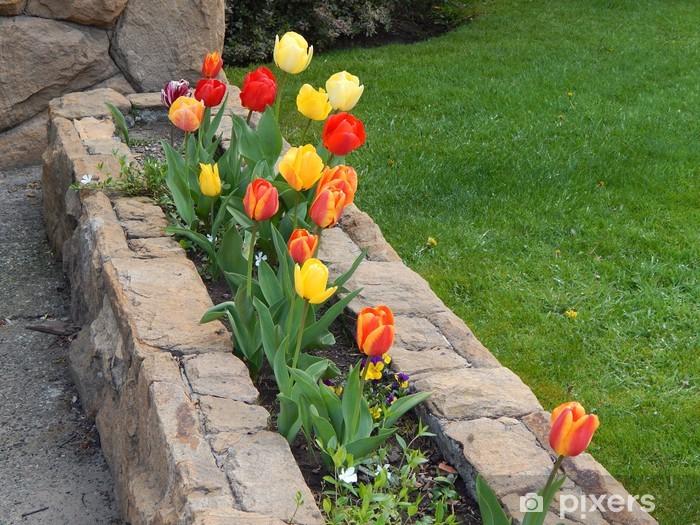 Papier peint vinyle Cantero de tulipanes - Fleurs
