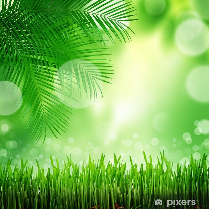 natural green background with selective focus Wall Mural - Vinyl