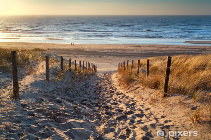path to the sea at sunset Vinyl Wall Mural - Netherlands