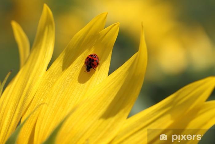 Naklejka Pixerstick Biedronka i słonecznika - Pory roku