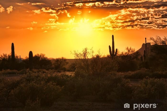Beautiful sunset view of the Arizona desert with cacti Pixerstick Sticker - America