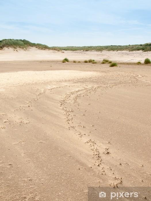 Vinilo Pixerstick Paisaje de dunas de verano - Naturaleza y zonas salvajes