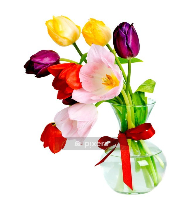 Purple Tulip Flowers Kitchen Vinyl Wall Stickers Home: Tulips Wall Decal • Pixers® • We Live To Change