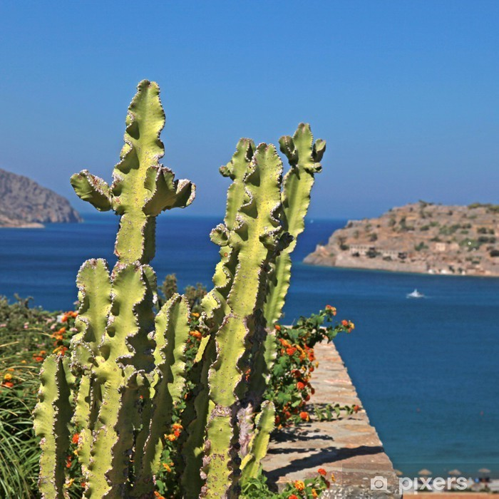Naklejka Pixerstick Widok na morze i taras z kaktusa i kwiatów, grecja - Europa