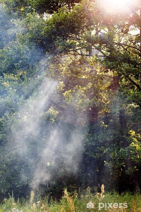 Naklejka Pixerstick Forest Morning - Lasy