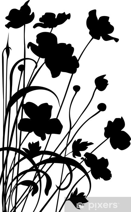 Papier peint vinyle Pavots - Plantes