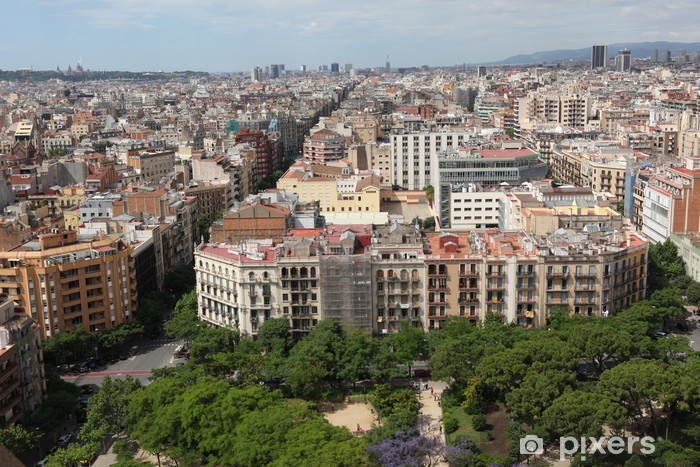 Aerial View Barcelona Spain Wall Mural Pixers We Live To Change