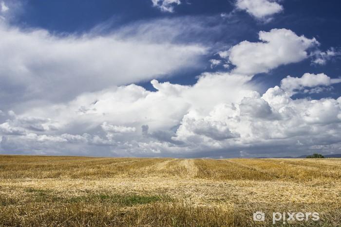 Papier peint vinyle Campagne d'Italie - Agriculture
