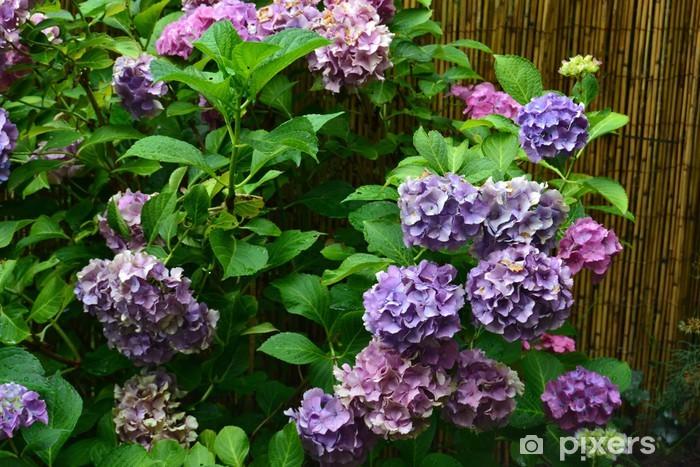 Nálepka Pixerstick Blautöne - Květiny