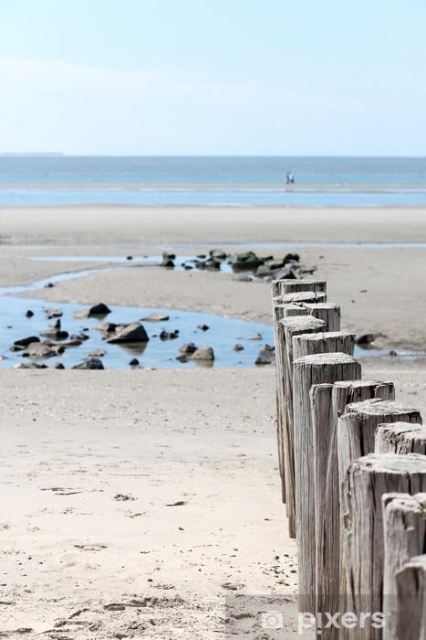 Fototapeta winylowa Plaża / Ameland - Tematy