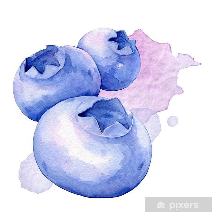 Poster Myrtilles. Illustration d'aquarelle - Fruits