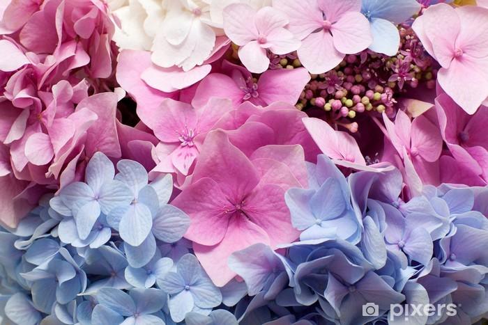 Beautiful hydrangea background Pixerstick Sticker - Flowers