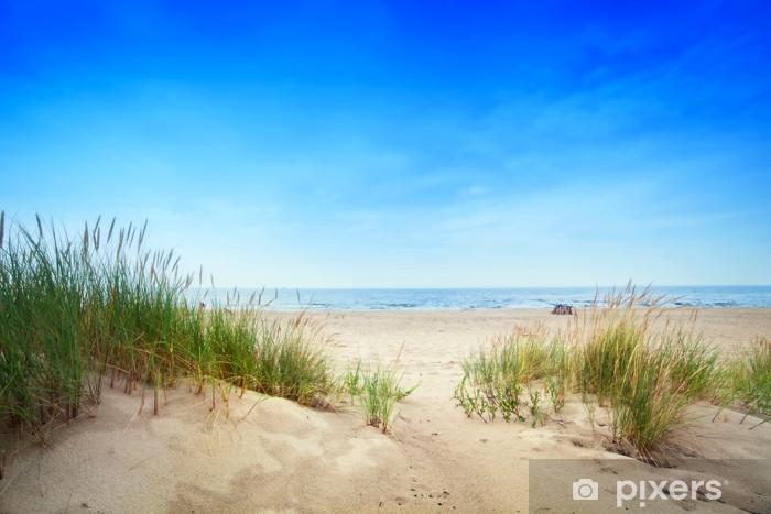 Pixerstick Sticker Kalm strand met duinen en groen gras. Rustige oceaan - Bestemmingen