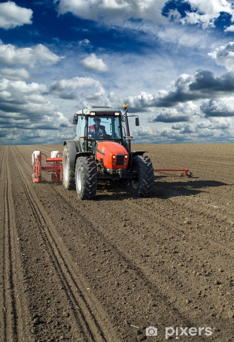 Vinyl-Fototapete Landwirt auf Traktor Aussaat Mais Maiskulturen - Landwirtschaft