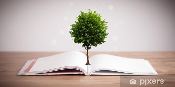Naklejka Pixerstick Drzewo rośnie z otwartej książki - Edukacja
