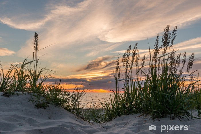 Sunset at the beach of Darß at the Baltic Sea, Mecklenburg-West Vinyl Wall Mural - iStaging