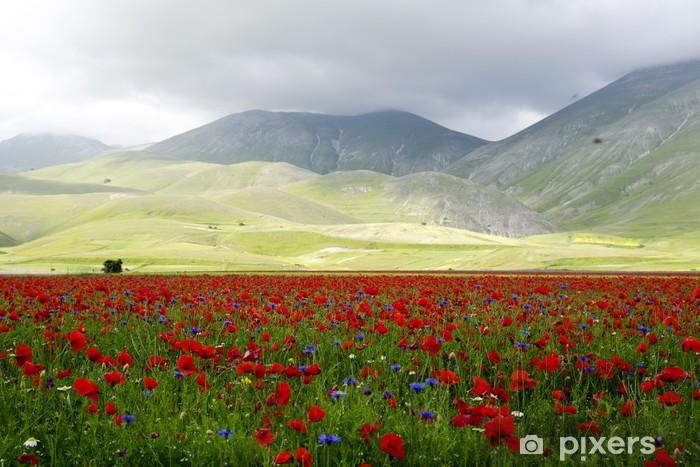 Naklejka Pixerstick Castelluccio - Góry