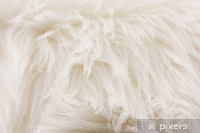 White Fur Texture Close Up Useful As