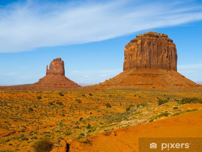 Monument valley Vinyl Wall Mural - America