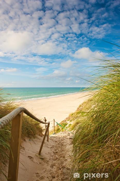 Fototapeta winylowa Droga do plaży - Holandia