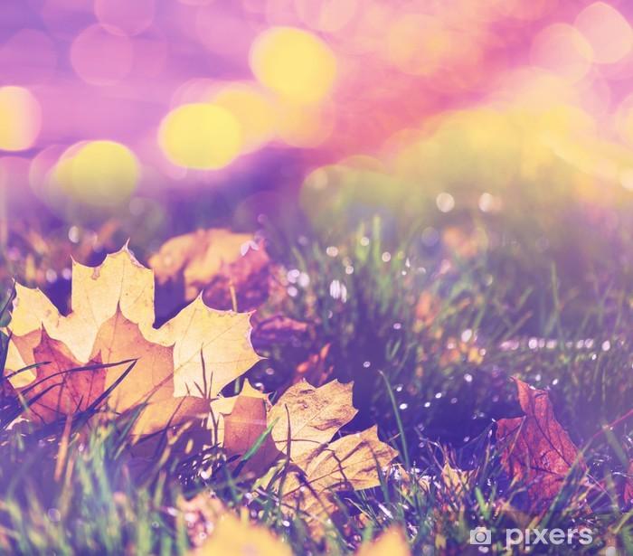 Carta da Parati in Vinile Autumn leaves - Temi