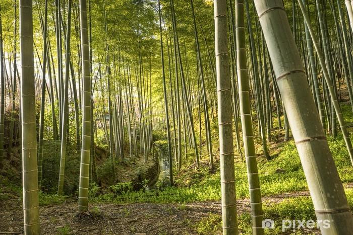 Papier peint vinyle Bamboo Forest de Kyoto, au Japon - Asie