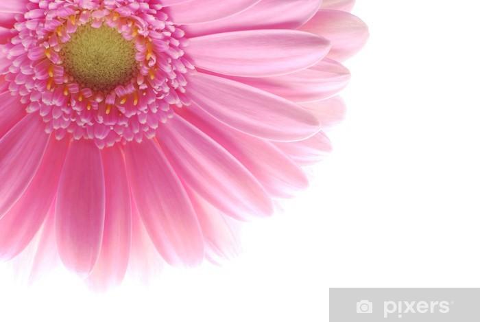 Naklejka Pixerstick Pojedynczy różowy Gerbera - Kwiaty
