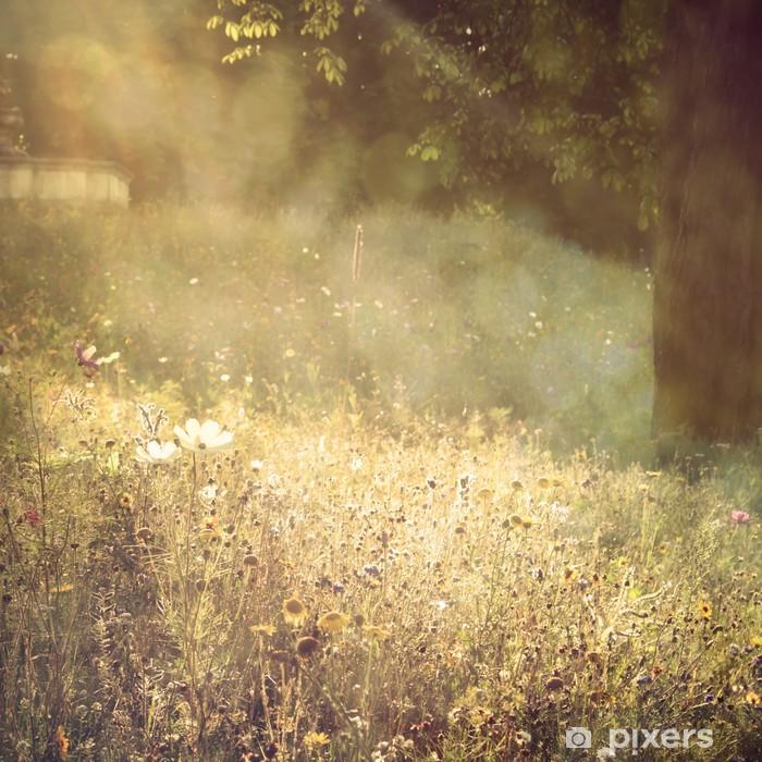 Plakat Wielokolorowe kwiaty z tła pola lato ciepłe brokatem - Pory roku
