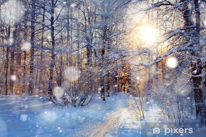 Naklejka Pixerstick Snow w lesie - Tematy