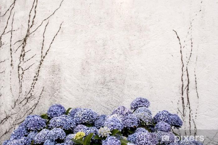Vinilo Pixerstick Hermosa hortensia azul o Hydrangea macrophylla con un blanco w - Estaciones