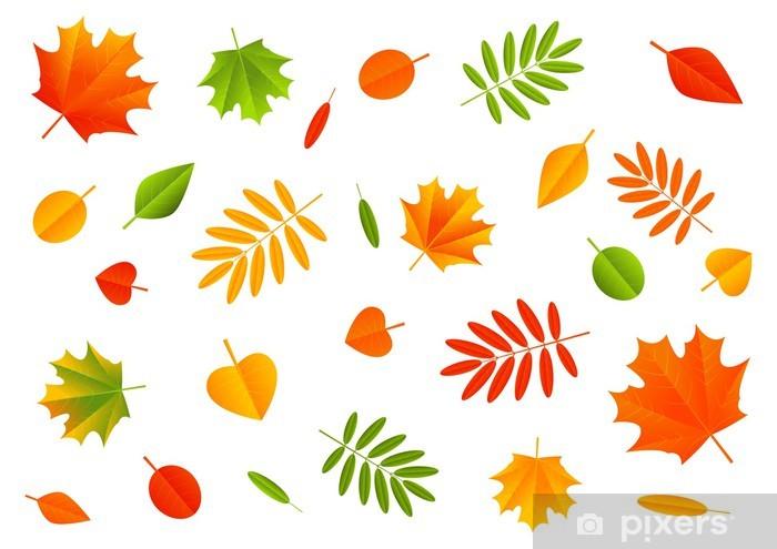 Papier peint vinyle Couleur de feuilles d'automne sur fond blanc - Saisons