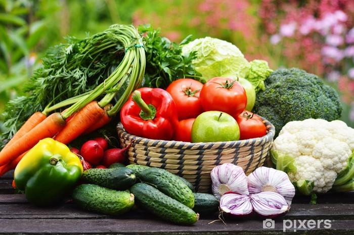 Papier peint vinyle Variété de légumes frais biologiques dans le jardin - Thèmes
