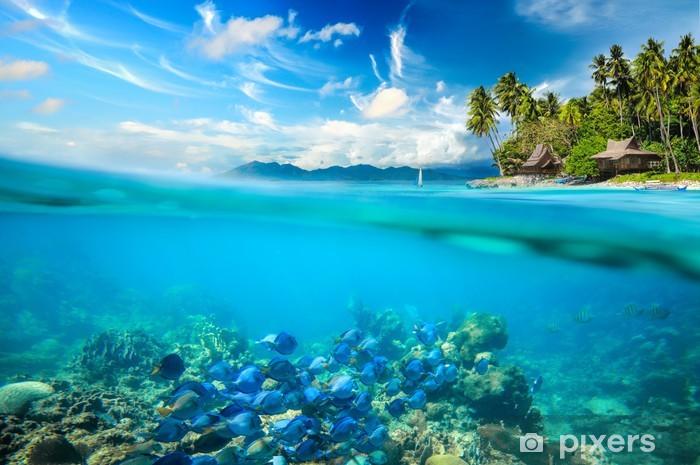 Fotomural Estándar Los arrecifes de coral, peces de colores - Arrecife de coral