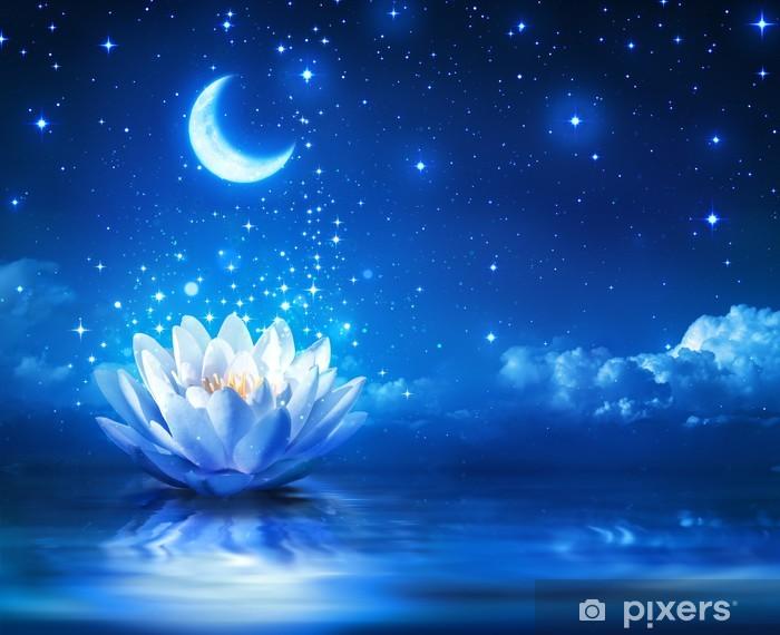 Naklejka Pixerstick Grzybienie i księżyc w gwiaździstą noc - Magia tle - Przeznaczenia