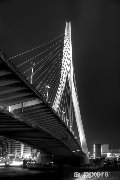 Fotomural Estándar De Puente Erasmus - Temas