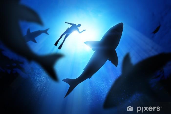 Zelfklevend Fotobehang Duiker en de grote witte haaien - Water